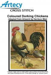 Coloured  Dorking  Chickens
