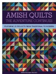 Amish Quilts: The Adventure Continues: Featuring 21 Projects from Traditional to Modern