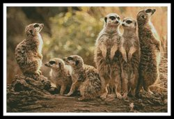 Artecy Cross Stitch - Meerkat Family