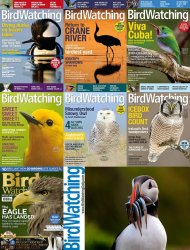 BirdWatching - Full Year Collection (2015)