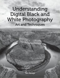 Understanding Digital Black and White Photography: Art and Techniques