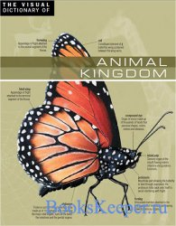 The Visual Dictionary of Animal Kingdom