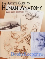 The Artist's Guide to Human Anatomy