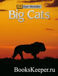 Eye Wonder - Big cats