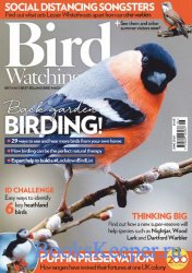 Bird Watching UK №6 2020
