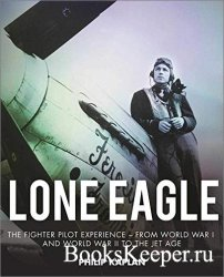 Lone Eagle: The Fighter Pilot Experience