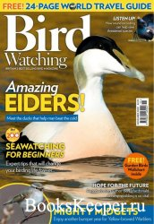 Bird Watching UK - November 2020