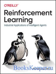 Reinforcement Learning: Industrial Applications of Intelligent Agents (Fina ...