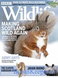 BBC Wildlife Vol.38 №13 2020