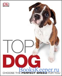 Top Dog: Choose the Perfect Breed for You