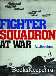 Fighter Squadron at War