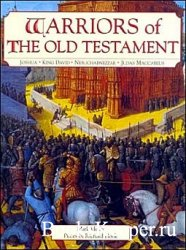 Warriors of the Old Testament