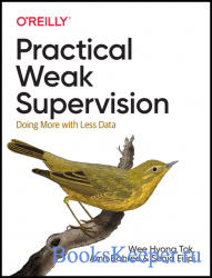 Practical Weak Supervision: Doing More with Less Data (Final)